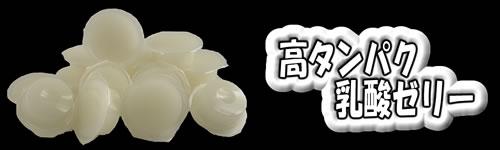 高タンパク乳酸ゼリーワイドS 500Pバルク