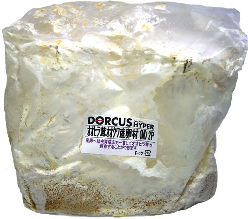 オオヒラ茸オオクワ産卵材(M)2P