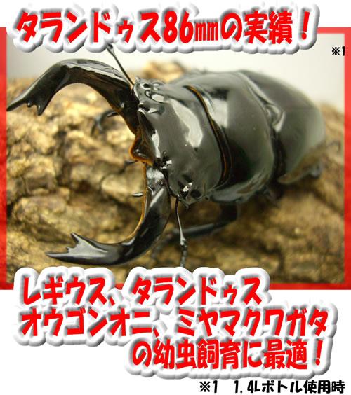 カワラ茸RGボトル 1.4L