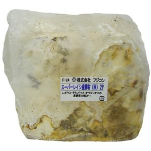 スーパーレイシ産卵材(M) 2P