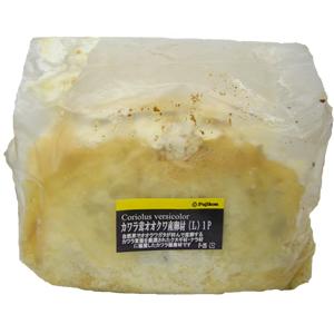 カワラ茸オオクワ産卵材(L) 1P
