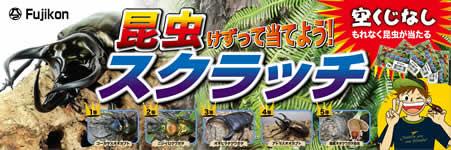 イベントセット/昆虫スクラッチセット