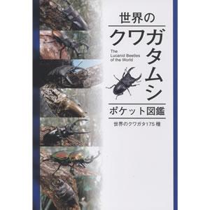 世界のクワガタムシポケット図鑑
