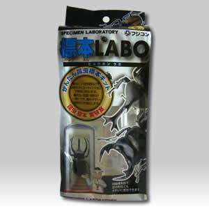 標本LABO