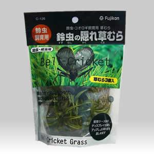 鈴虫の隠れ草むら